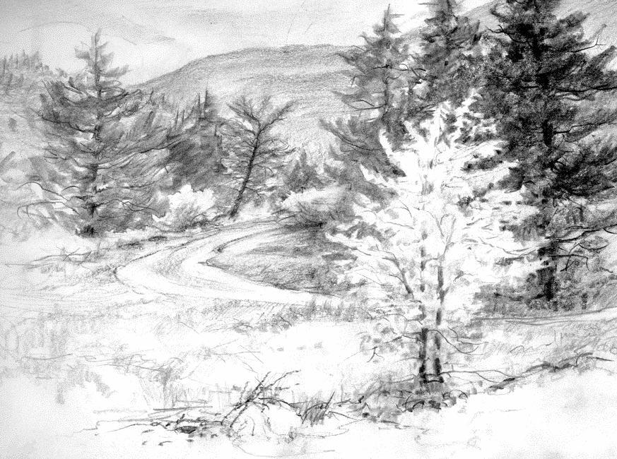 Drawn bush scenery الصفحة الصفحة رجع 2 الرصاص