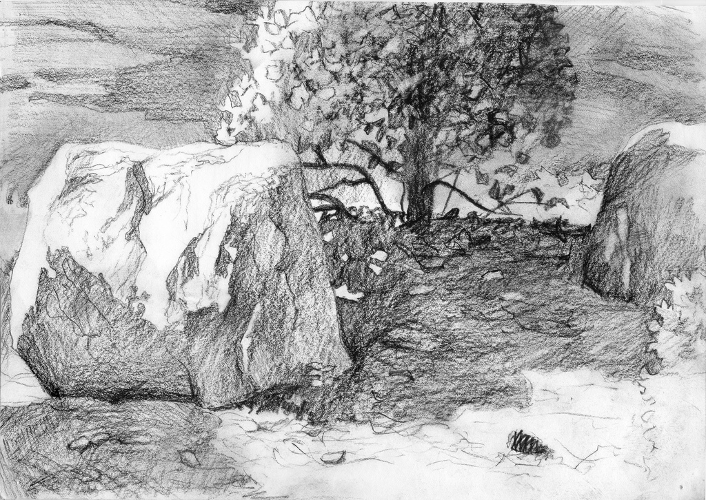 Drawn rock pencil drawing And Sketches Pinecone and McCue