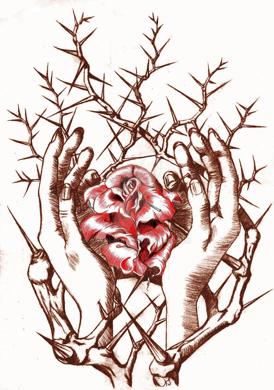Drawn rose bush thorn bush Hands BOW rose DeviantArt by