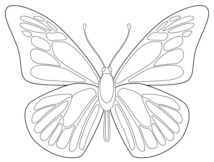 Drawn butterfly #2
