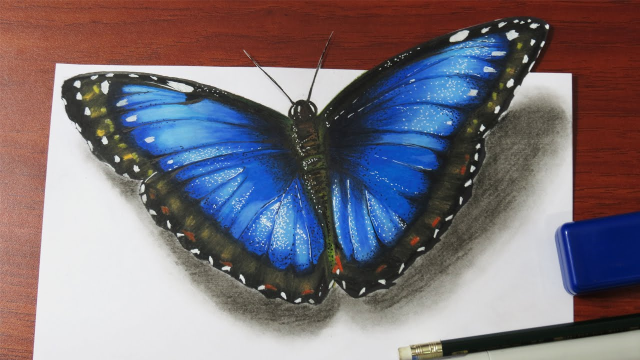 Drawn butterfly blue butterfly A How Realistic Butterfly YouTube