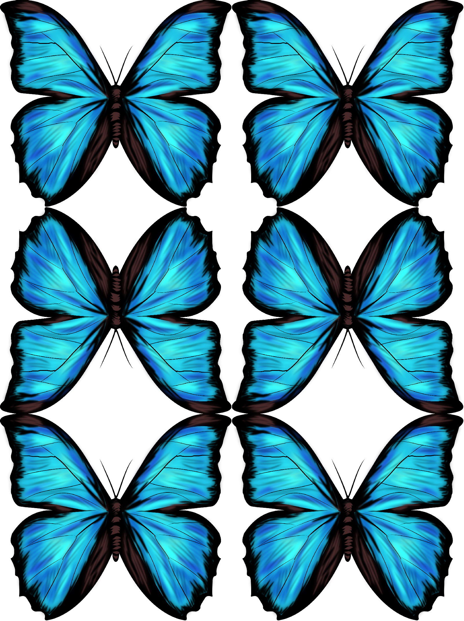 Drawn butterfly blue butterfly Free of download and tutorial