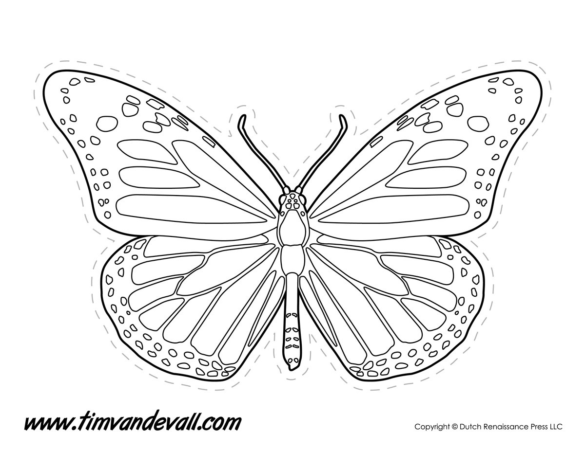 Drawn butterfly color cut out Out color Butterflies templates Color