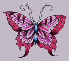 Drawn butterfly colour pencil Drawings Pencil Of Drawings Megan