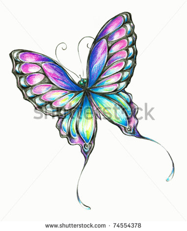 Drawn butterfly colour pencil Drawing Search color butterfly drawing