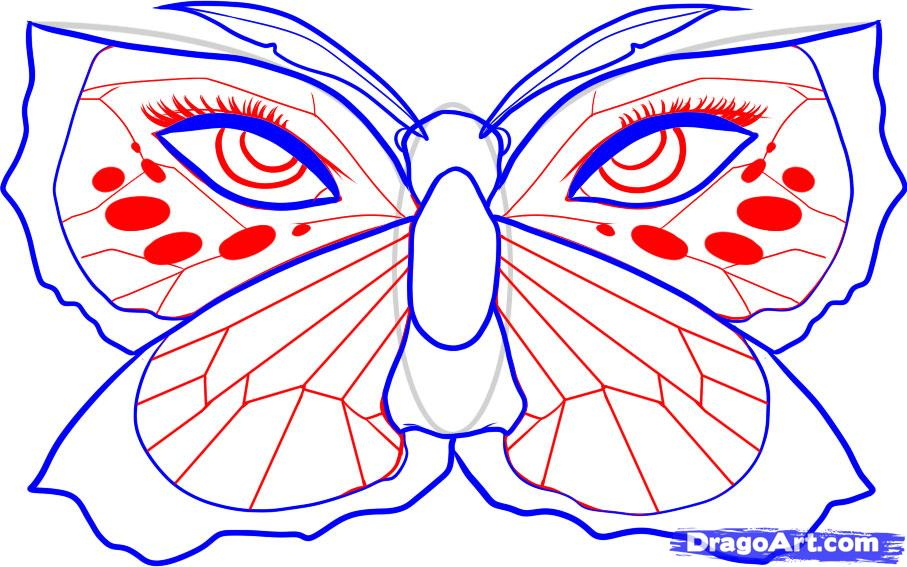 Drawn butterfly dragoart How 6 by Step how