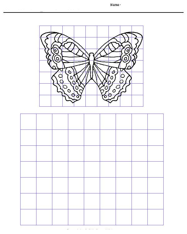 Drawn butterfly grid Pinterest Grid 7 on drawings