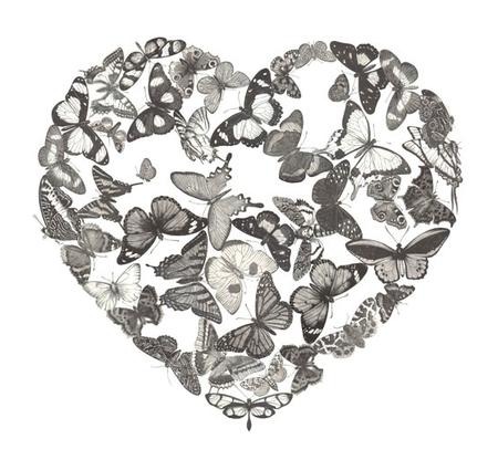 Drawn butterfly heart A heart It's hand hearts