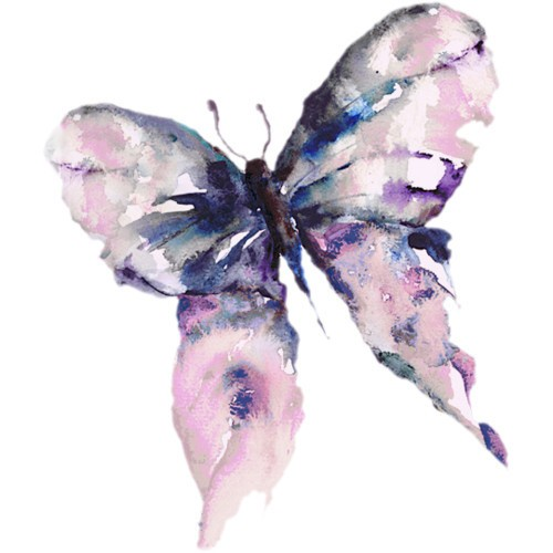 Drawn butterfly native american Symbolism Water Butterfly color Butterfly