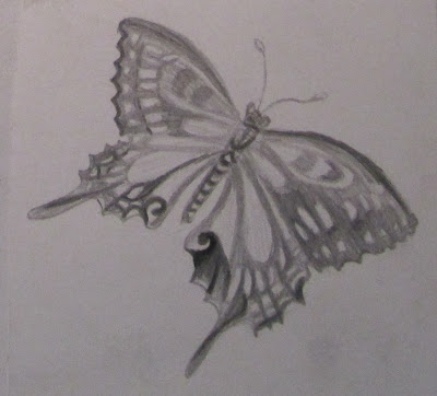 Drawn butterfly natural Charcoal's should though make expressive