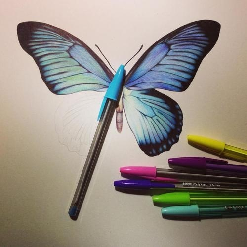 Drawn butterfly pen Pen Drawings by Ecstasy Colors