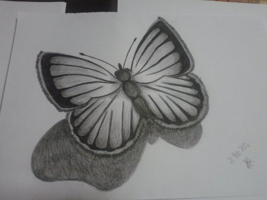 Drawn butterfly sideways Pencil: kokkilamb01 kokkilamb01 on by