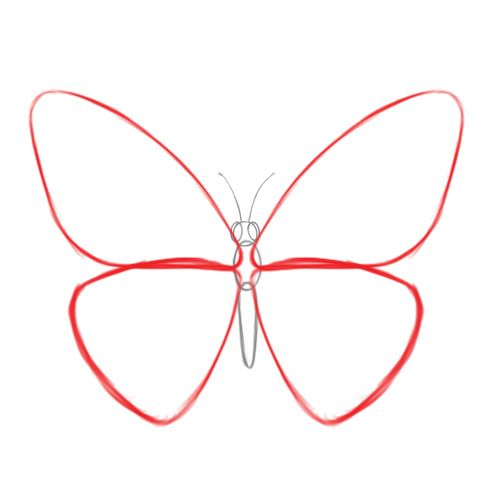 Drawn butterfly simple Butterfly DrawingDrawing Easy best DrawingsCartoon