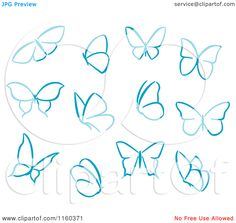 Drawn butterfly simple  contours Vector Various Butterflies