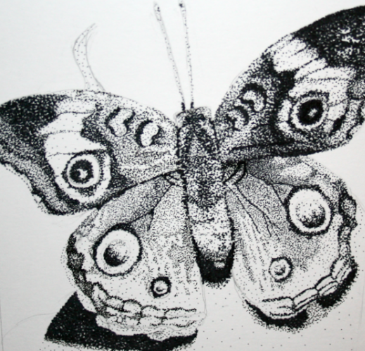 Drawn butterfly stippling By on fakeblues DeviantArt butterfly