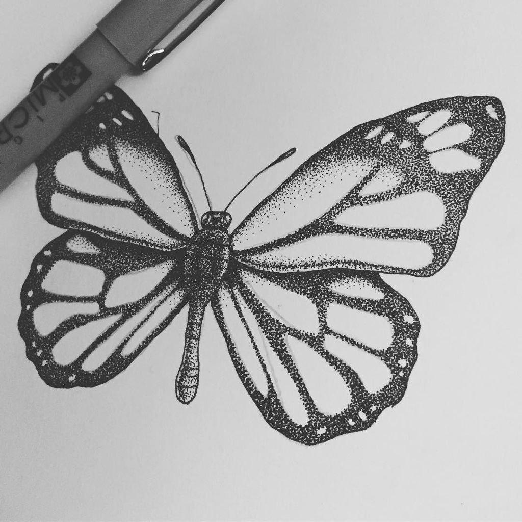 Drawn butterfly stippling Nikander Twitter: on butterfly