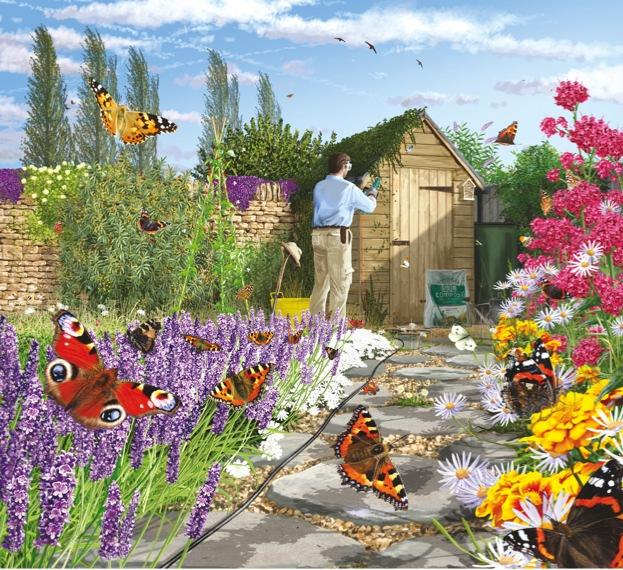 Drawn butterfly the garden drawing Wildlife to friendly How butterflies
