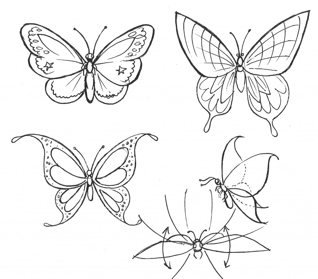 Drawn butterfly the garden drawing To step garden Art a