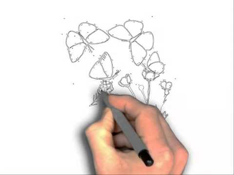 Drawn butterfly the garden drawing A YouTube garden in butterfly