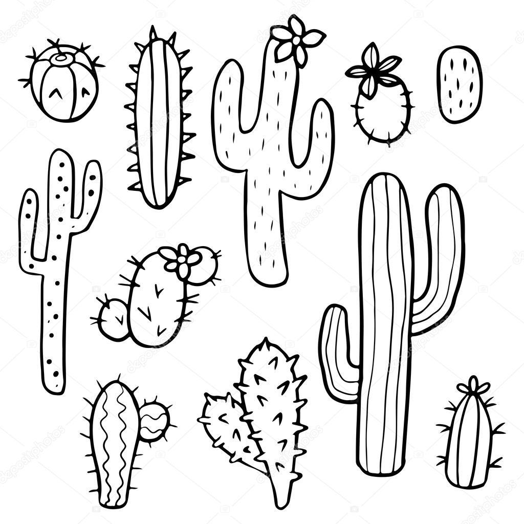 Drawn cactus Stock cactus — Stock #56307355