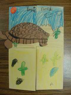 Drawn cactus desert animal Adaptations Craft Hotel Plants