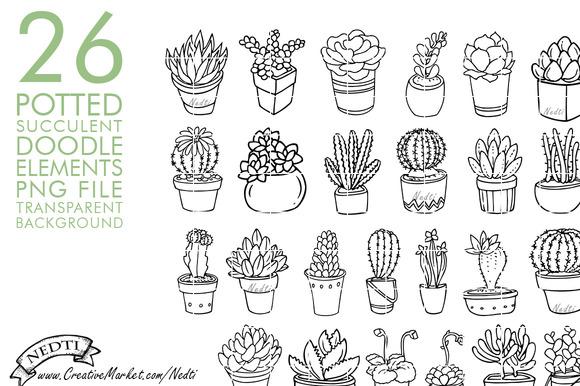 Drawn plant cactus succulent Nedti Succulent Creative Potted Drawn