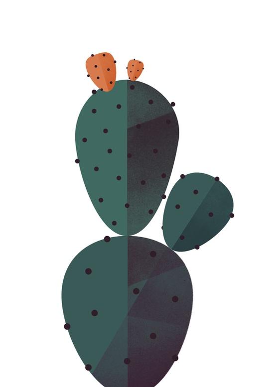 Drawn cactus flat design Maya Pinterest and Shiny Cactus