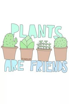 Drawn cactus overlays Gallery  Pin Find on