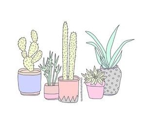 Drawn cactus overlays Best draw on images 272