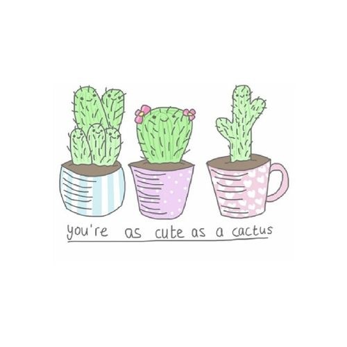 Drawn cactus overlays Best  on images 12