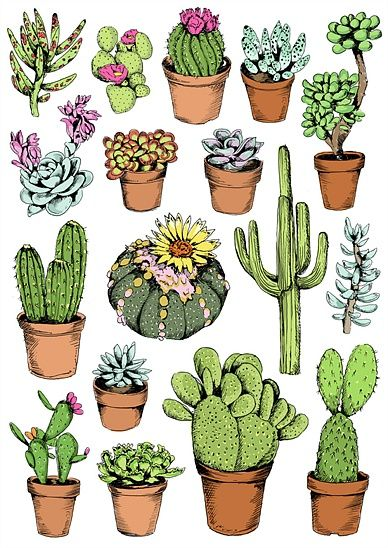 Drawn pot plant spliff Best May Cactus on Millingen