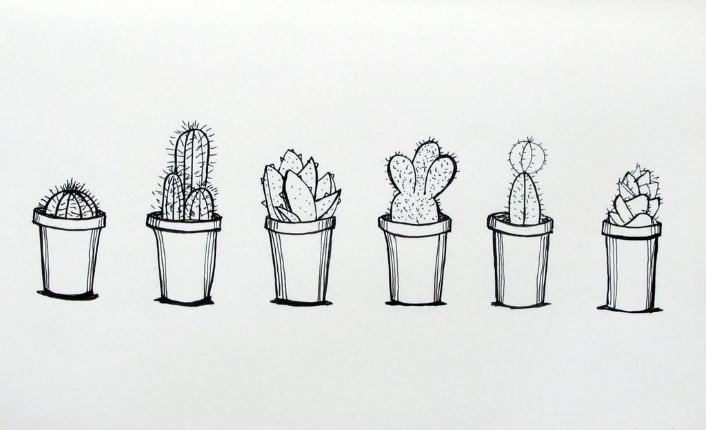 Drawn cactus Cacti Making Made Potted Cacti