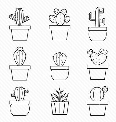 Drawn cactus small Best  25+ on Pinterest
