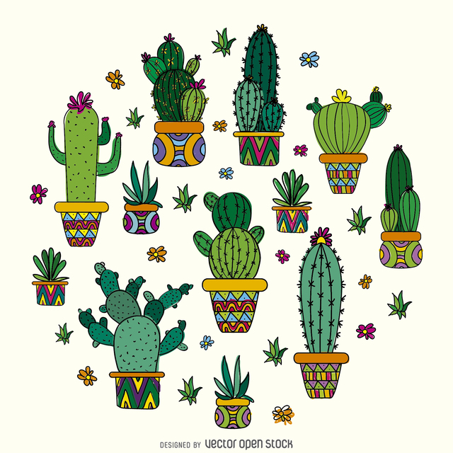 Drawn cactus small Multiple types design pots featuring
