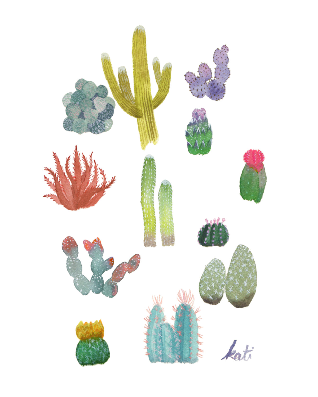 Drawn plant cactus succulent Watercolor cacti print // by