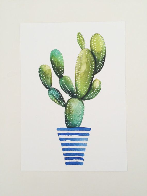 Drawn cactus watercolour Ideas watercolor drawing nature of
