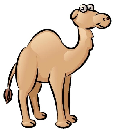 Drawn camel With a How to Draw