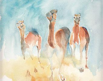 Drawn camel children's Camel four Etsy Cards Animal