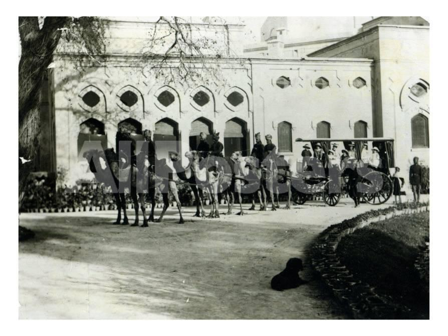 Drawn camel house  1900 c AllPosters 1900