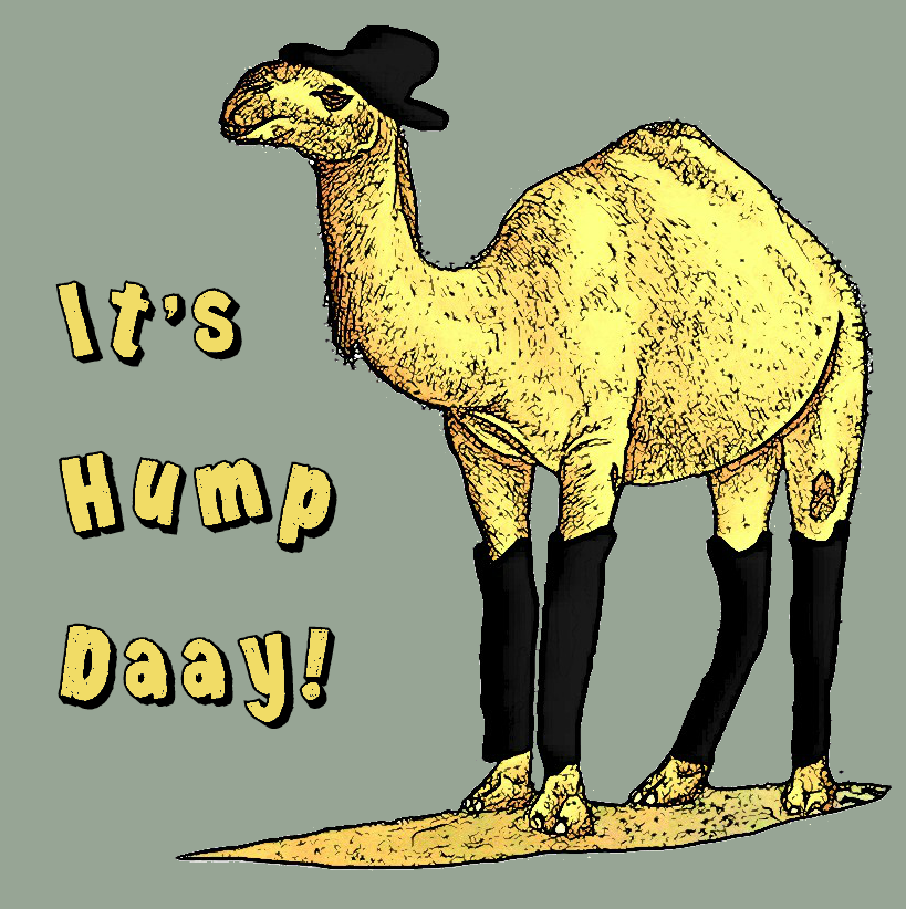 Drawn camel hump day camel To the post camel was
