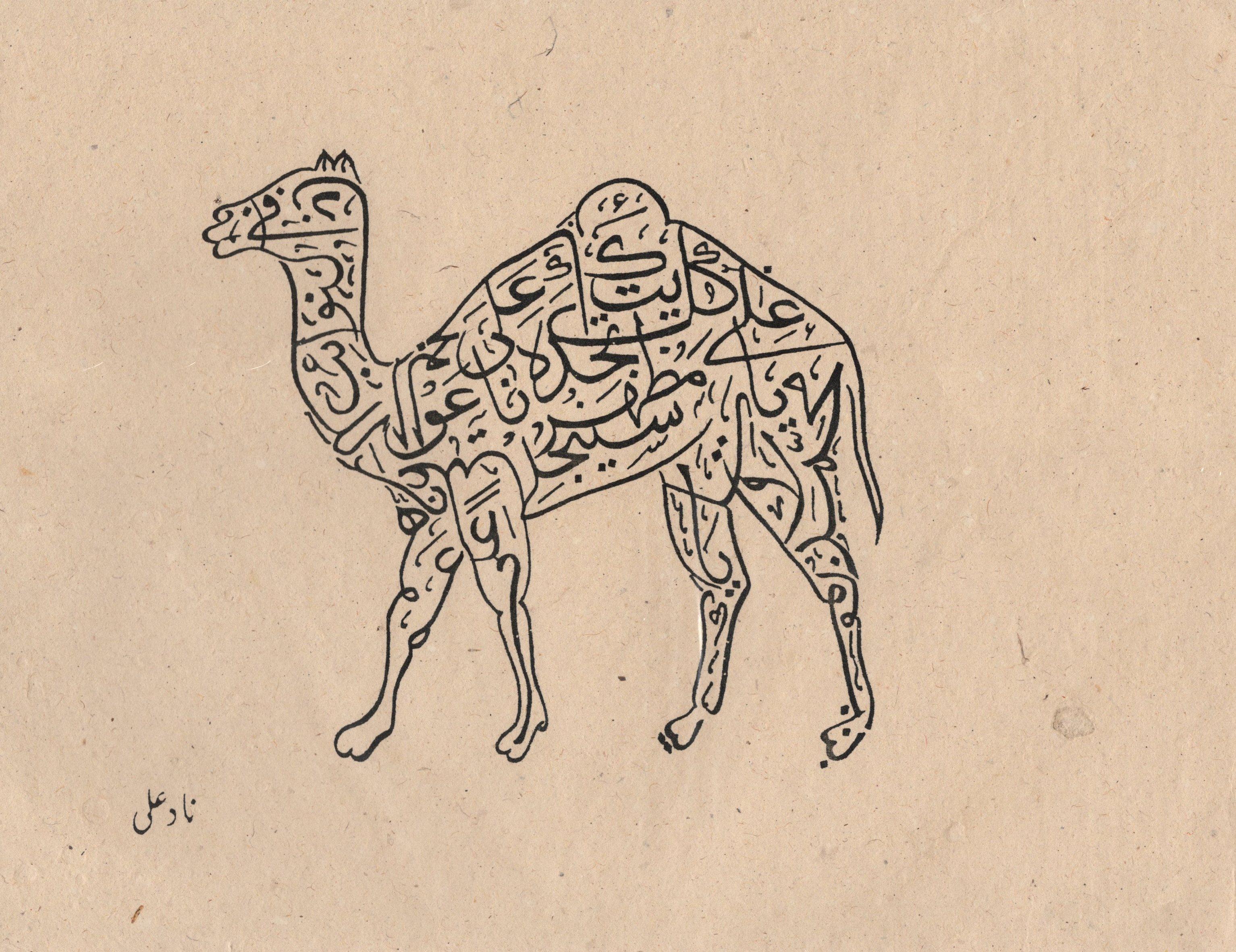 Drawn camel islam Turkish Explore more!  Drawing