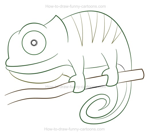 Drawn cameleon Chameleon Cartoon A to