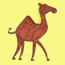 Drawn camel chibi To CAMEL com hippopotamus Hellokids