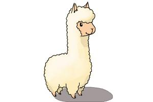 Drawn camel chibi How DrawingNow Llama Draw a