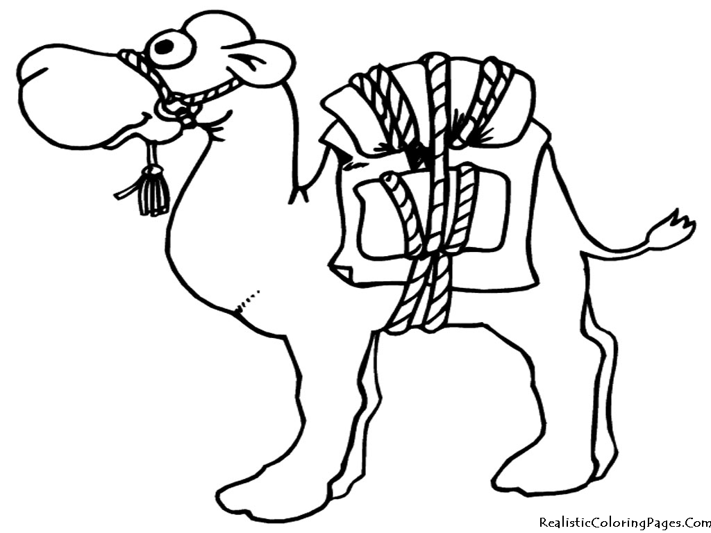 Drawn camels coloring book Of 9 Camel Egyptian Camel