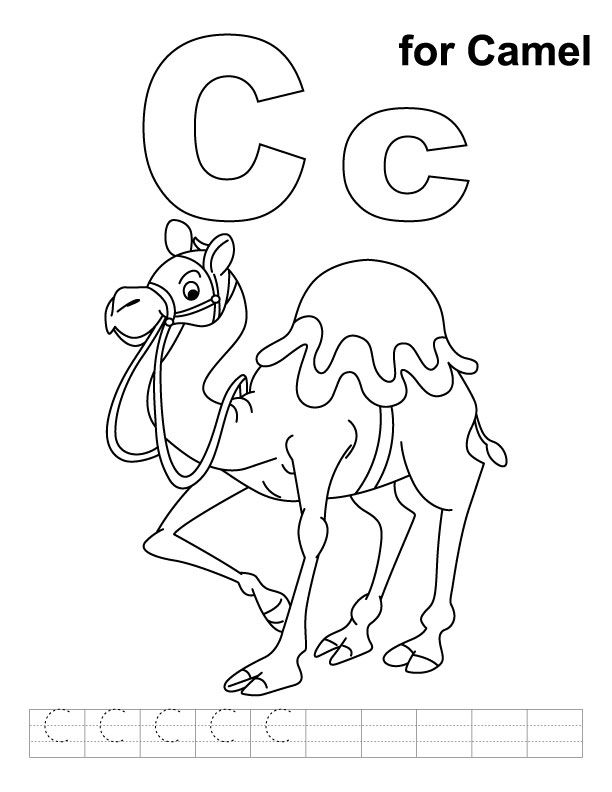 Drawn camels coloring book Coloring with Camels on images