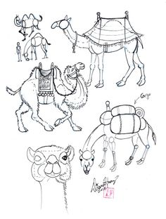 Drawn camels cute Camels on craft and by