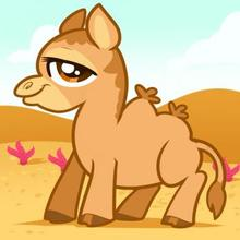 Drawn camels cute Hellokids How eagle an Draw