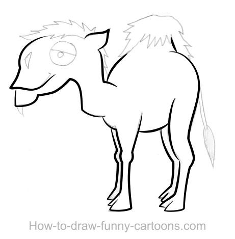 Drawn camel line drawing Vector) + Camel  (Sketching