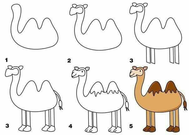 Drawn camels easy Draw how Illustrators and Illustrations